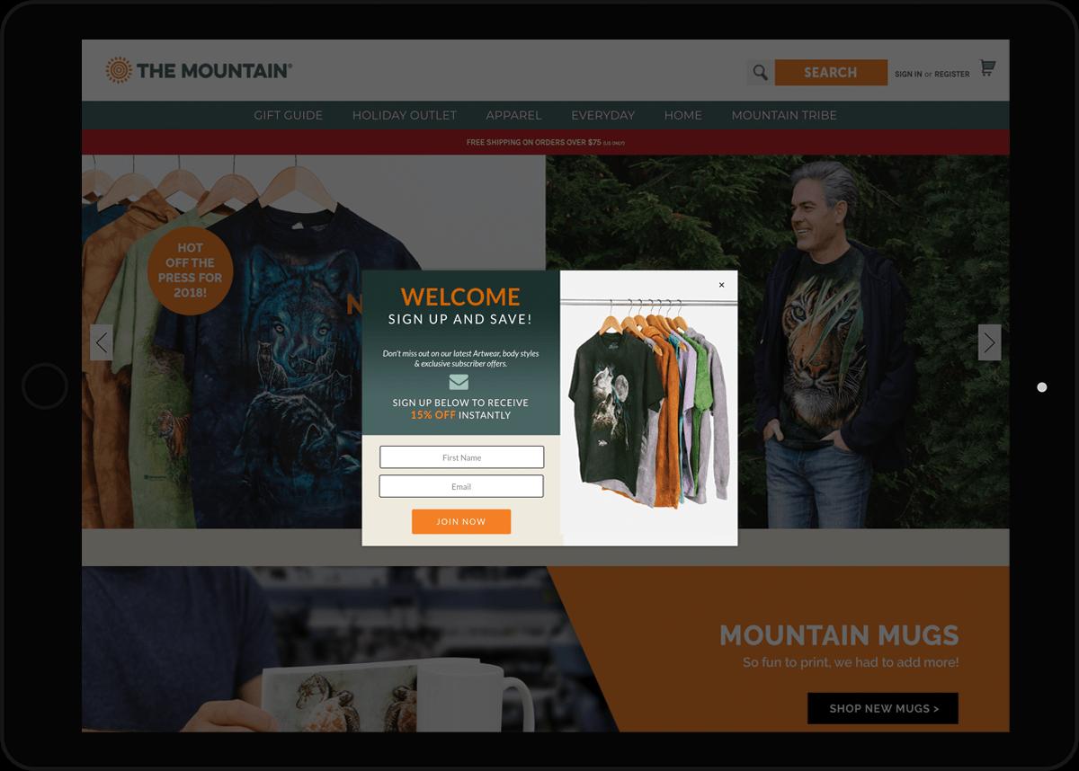ecommerce web design jacksonville